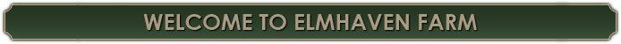 Welcome To Elmhaven Farm
