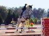 denny-fl-2016-jump-1