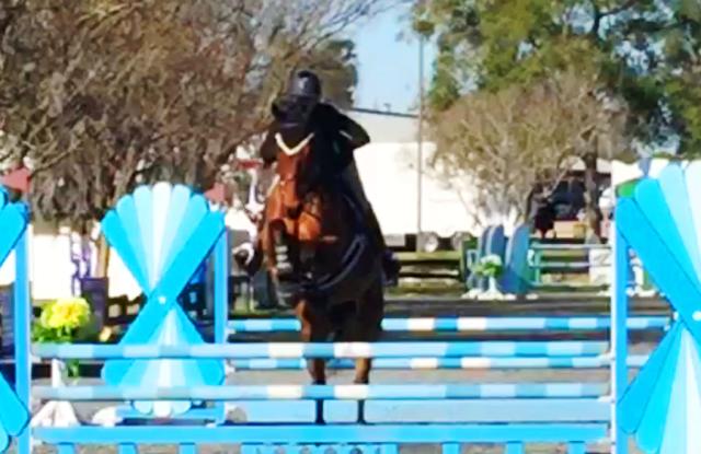 devlin-fl-2016-jump-1