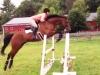 devlin-jump-oxer-1
